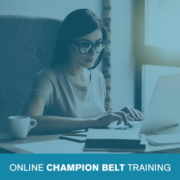 Online Lean Six Sigma Champion Belt