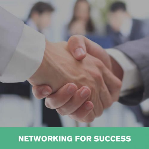Online Networking for Success Training