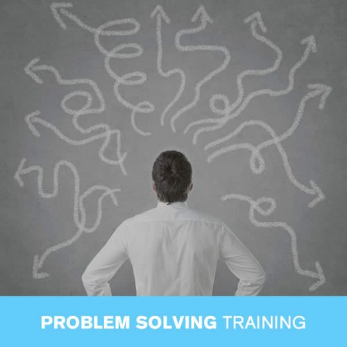 Online Problem Solving Training