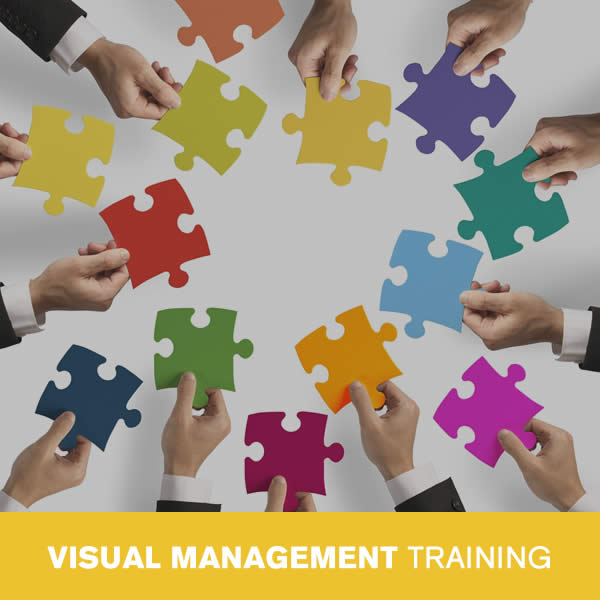 Online Visual Management Training